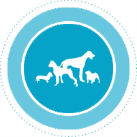 dog_icon-copy