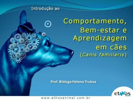 Instituto-de-Biociencias-IB-USP-mini-curso-comportamento-canino-semana-temática-da-biologia-ethos-animal-helena-truksa-12