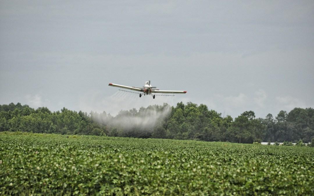 Stoa TP Backgrounder #2: Herbicides