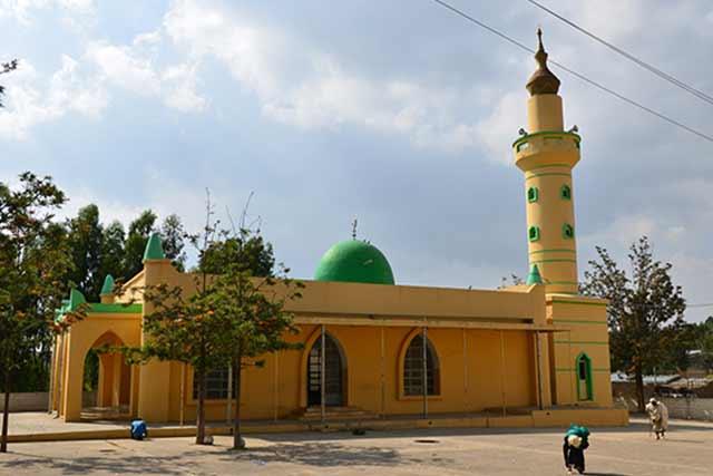 Image result for negash ethiopia