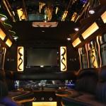 party bus 20 passengers
