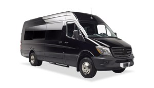 Mercedes Executive Sprinter Van