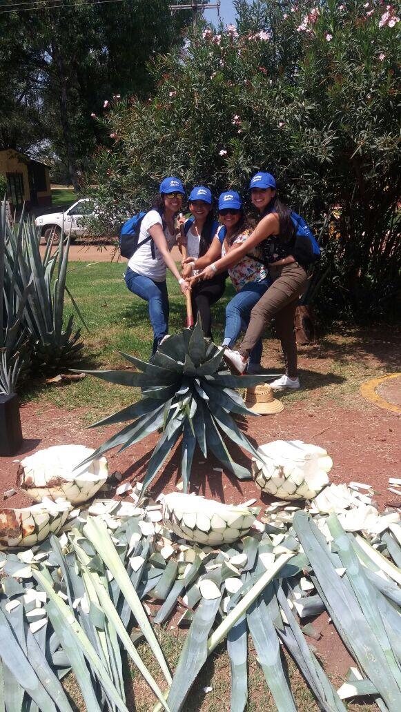 Día de la Independencia en Jalisco 8