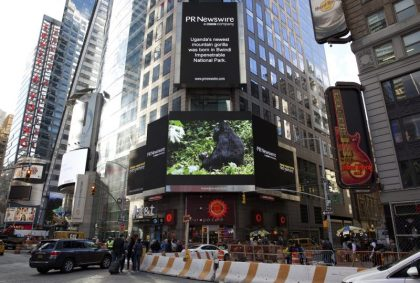 Gorilla baby boom  beamed  on Times Square giant screens
