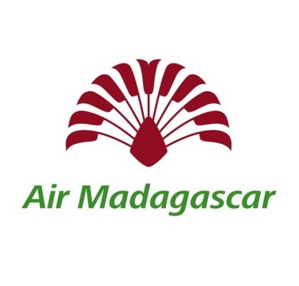 Air Austral and Air Mauritius among 7 bidders for stake in Air Madagascar