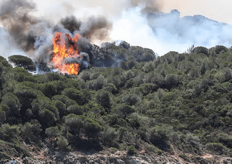 Wildfires threaten tourist resorts in Corsica and Côte d'Azur