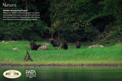 PATA Gold Award: A proud moment for Elephant Hills