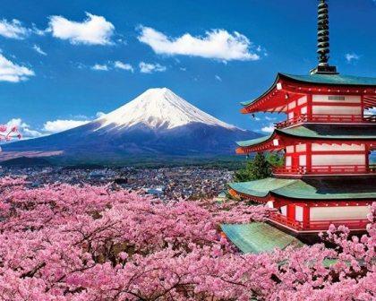 Japanese tourism rising through the ranks