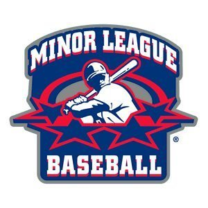 Minor League Baseball: 83 teams post with record attendance