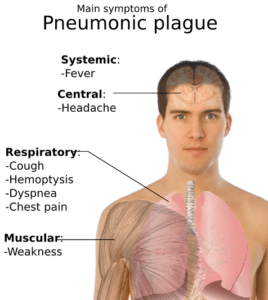 One case of pneumonic plague confirmed in Seychelles: Authorities restricting travel entry from Madagascar