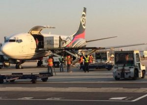 SF Express international air cargo network expands from Nanjing to Osaka