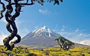 Azores has 9 volcanic islands and  41 companies signing the Sustainability Charter
