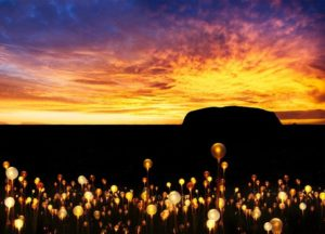 Successful Field of Light Uluru shines on into 2020