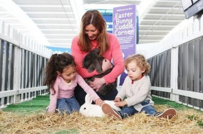 Hop on Holiday: Heathrow offers real life cuddles from Easter bunnies