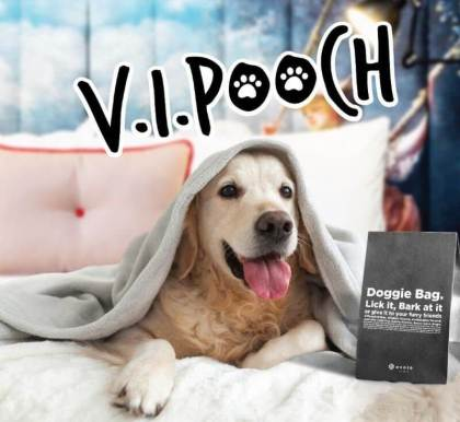 "Ovolo Hotels launches new pet-friendly ""V.I.Pooch""program"