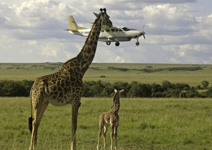 Tanzania tour operators want reforms to improve business landscape