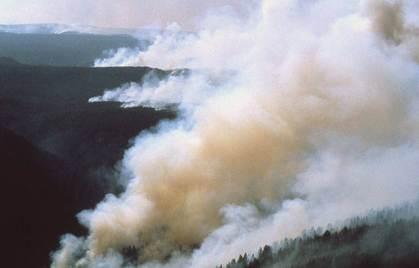 Okanagan Tourism in British Columbia preparing for summer crisis management