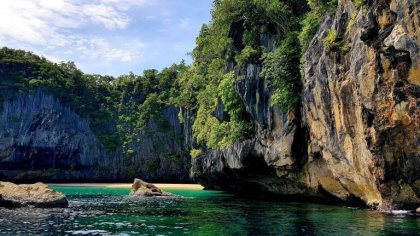 How to Enjoy the Marine Life Richness and Lushness in Palawan?
