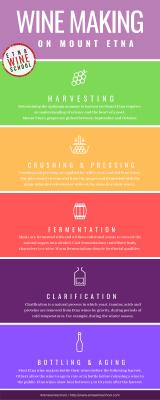 Etna Wine School | Winemaking Infographic