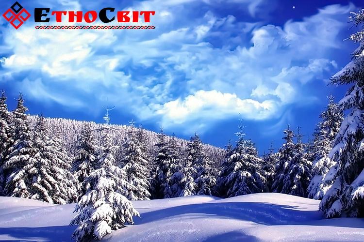Зимові тури на Драгобрат / Різдво на Драгобраті 2020