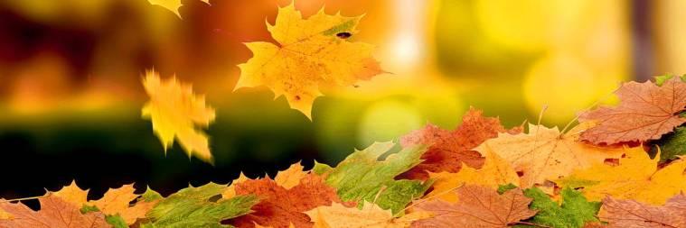 Осенние туры