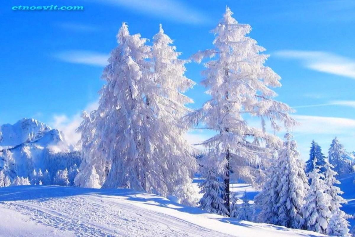 Карпати взимку / енкскурсія по Карпатам