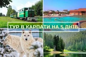 Тур в Карпаты на 5 дней из Львова