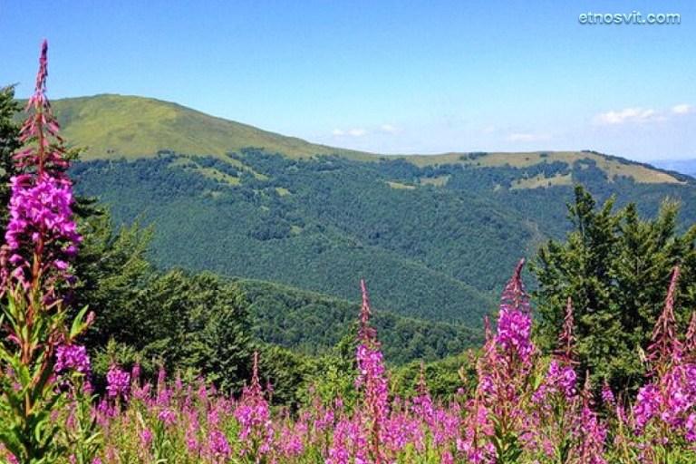 Гора Гымба (Гемба) | Закарпатье