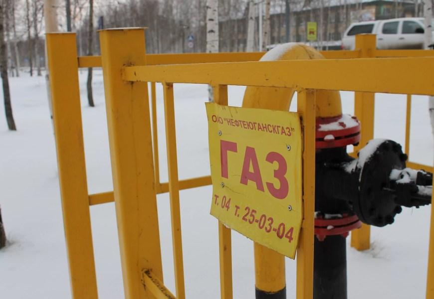 Жителей России хотят обязать установить «умные» счетчики на газ.