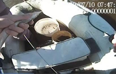 В Сургуте будут судить нефтеюганца за незаконный лов рыбы