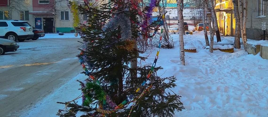 Жители Югры стали чаще покупать искусственные елки