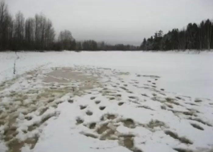По тонкому льду! Югорчан призывают к осторожности на водоемах