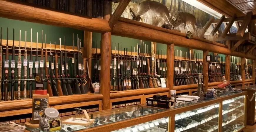 В России предложили повысить возраст для покупки оружия до 21 года