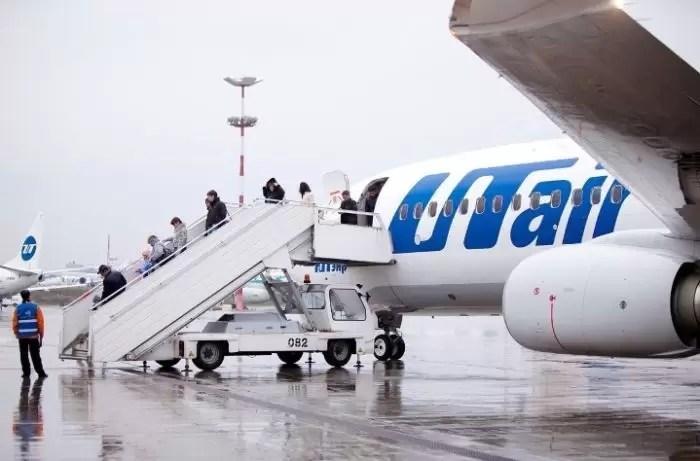 Кошек и собак теперь можно перевозить в салоне самолетов Utair