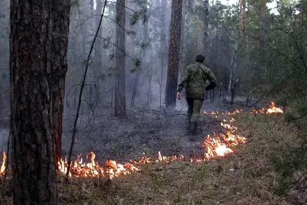 Погода позволила закрыть пожароопасный сезон в Югре