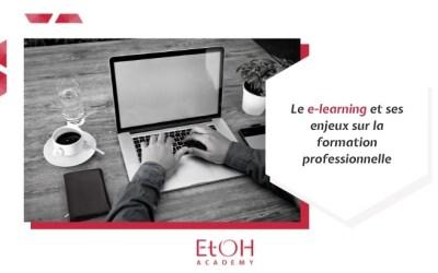 Le e-learning et ses enjeux sur la formation professionnelle