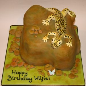 Lizard on a rock of cake