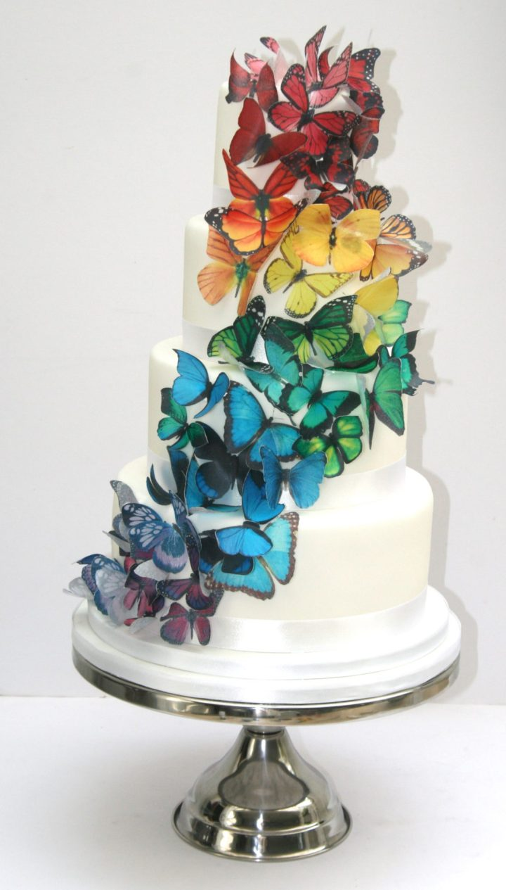 Rainbow Butterfly Wedding Cake