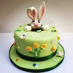 Spring Rabbit Cake