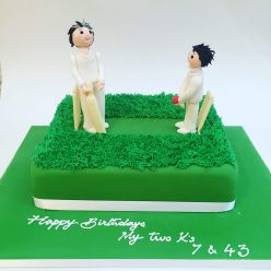 Cricket Cake - father and son