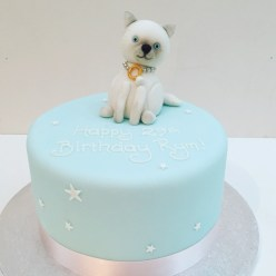 Pet Cat Birthday cake