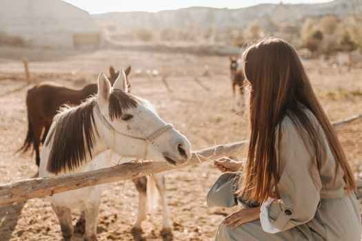 unrecognizable woman with horse in countryside