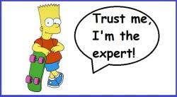 expert vs authority