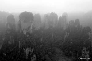 Black and white view of ZhangJiaJie National Forest Park