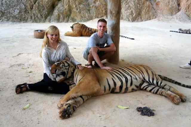 Picture with tiger