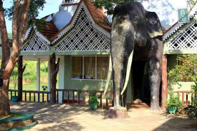 The coolest restaurant entrance we have ever seen, Pinnawala