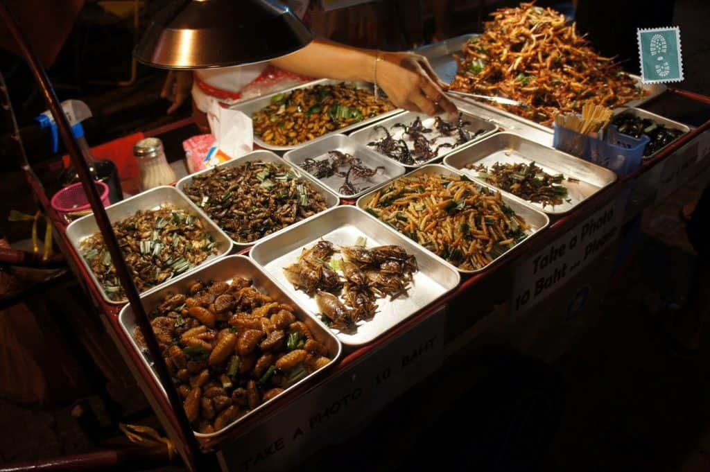 photo essay thai food travel blog bugs