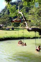 Blue Lagoon, jumping from the tree, swan style