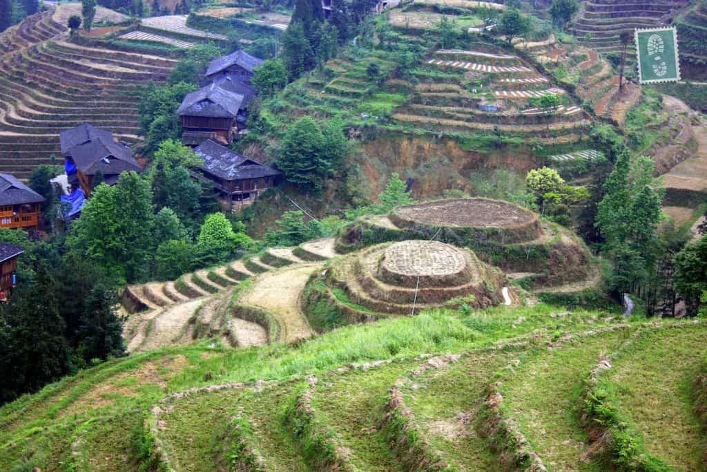 Longji Terraced Fields