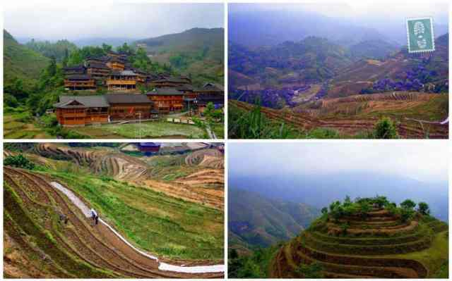 The stunning Longsheng Rice Terraces